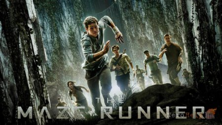 Обзор The Maze Runner